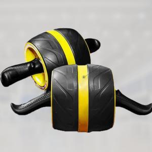 ab carver roller