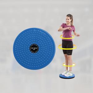 waist disc