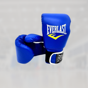 everlast fighting gloves