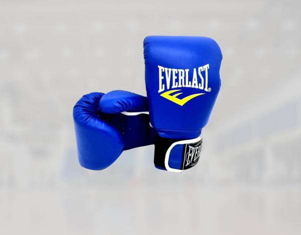 everlast fighting gloves